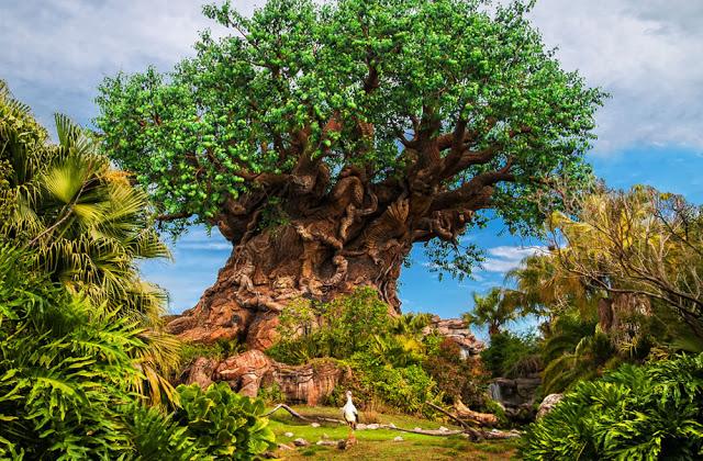 Los mejores parques de Orlando: parque Animal Kingdom de Disney Orlando