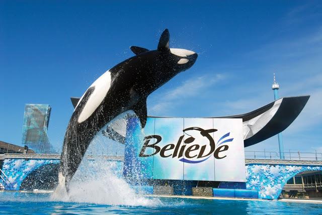 Los mejores parques de Orlando: parque SeaWorld Orlando